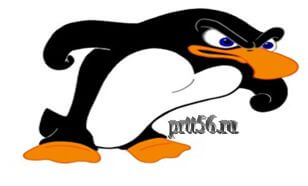 Алгоритм Google пингвин