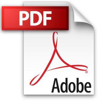файл PDF