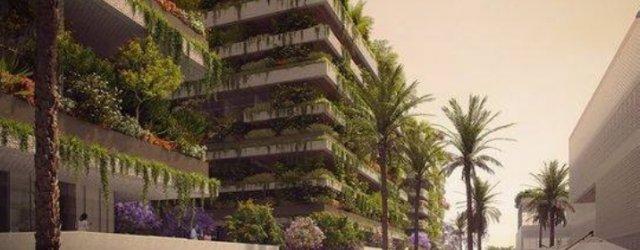 зеленый проект 2
