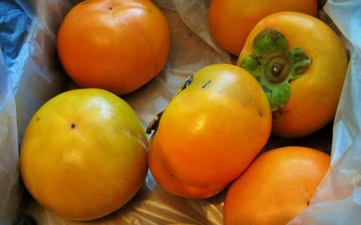 хурма плоды 2