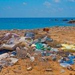 Глобальное загрязнение окружающей среды - проблема международного общественного здравоохранения