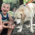"""7-летний """"ребенок года"""" спас от усыпления более чем 1300 собак"""