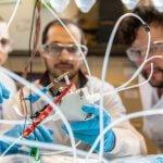 Использование CO2 для производства материалов с помощью нового катализатора