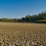 Октябрь 2020 года стал самым теплым в Европе за всю историю