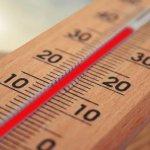 Лето 2020 года может стать самым жарким за последние 100 лет