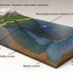 Ученые обнаружили рекордное количество микропластика на морском дне