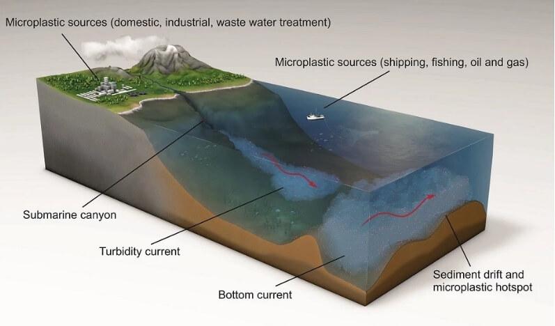 океан пластик распределение
