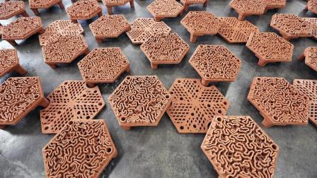 кораллы-3D-3