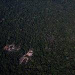 Антониу Сена шел через джунгли 36 дней, прежде чем его спасли