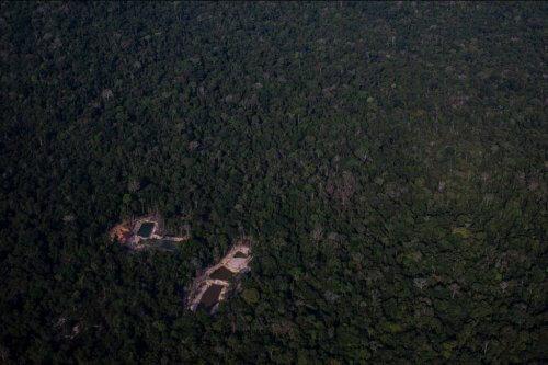 джунгли рудник