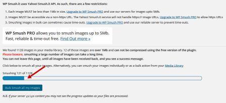 """Bulk Smush all my images""."