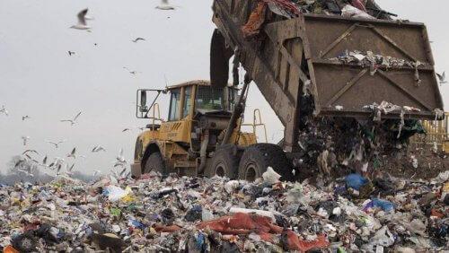 мусорные свалки