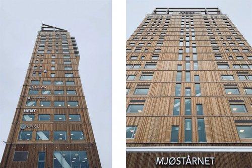 деревянный небоскреб 2