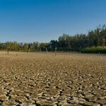 Изменение климата приводит к ухудшению состояния окружающей среды
