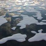 Объем морского льда в Арктике значительно сократился за последние несколько десятилетий