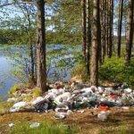 К чему приводит переизбыток пластика. Фото.