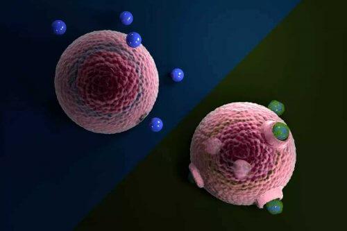 микропластик частицы