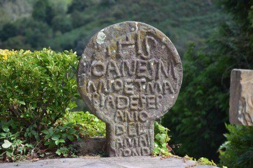 язык басков