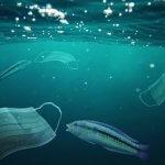 Пандемия пластика наводняет океаны